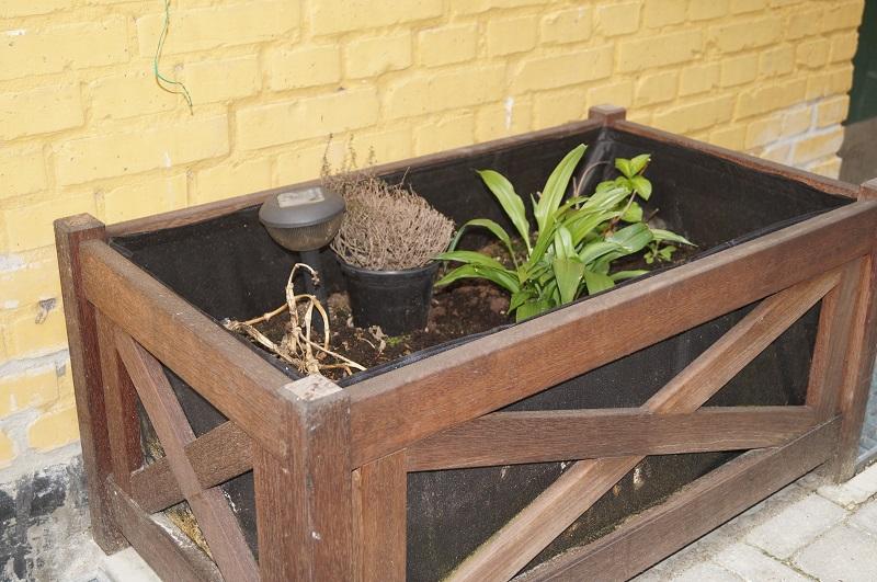 Der skal gøres plads til nye planter